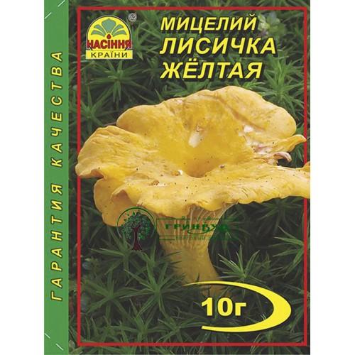 Купить МИЦЕЛИЙ ЗЕРНОВОЙ ЛИСИЧКА ЖЕЛТАЯ, 10 Г