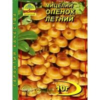 МИЦЕЛИЙ ЗЕРНОВОЙ ОПЕНОК ЛЕТНИЙ, 10 Г