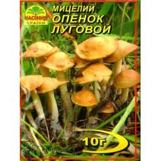 МИЦЕЛИЙ ЗЕРНОВОЙ ОПЕНОК ЛУГОВОЙ, 10 Г