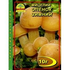 Купить МИЦЕЛИЙ ЗЕРНОВОЙ ОПЕНОК ЗИМНИЙ, 10 Г