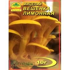 МИЦЕЛИЙ ЗЕРНОВОЙ ВЕШЕНКА ЛИМОННАЯ, 10 Г