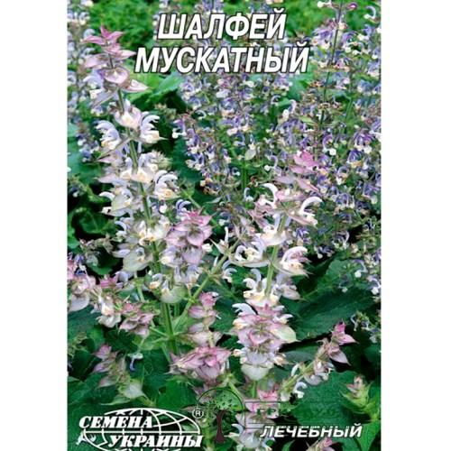 СЕМЕНА ШАЛФЕЙ МУСКАТНЫЙ, 0,3 Г