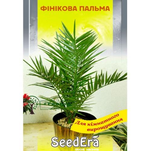 СЕМЕНА ФИНИКОВАЯ ПАЛЬМА, 2 ШТ. /SEEDERA/