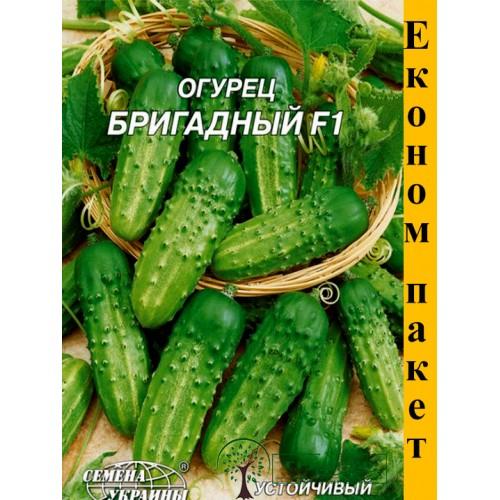 """СЕМЕНА ЭКОНОМ ПАК - ОГУРЕЦ """"БРИГАДНЫЙ F1"""", 4 Г"""